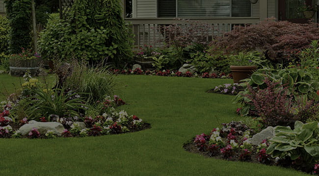 Ridley Park Landscape Design
